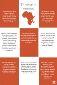 Namibia key abortion issues infographic 2016