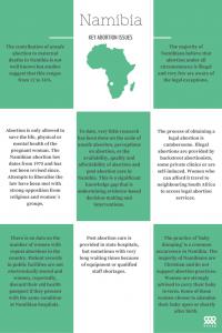 Tanzania key abortion issues