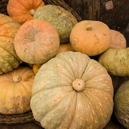 Potential of pumpkin to combat vitamin A deficiency during complementary feeding in low and middle income countries: variety, provitamin A carotenoid content and retention, and dietary reference intakes.
